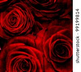 Stock photo abstract grunge textured background with roses for the cover design or photo album pages 99199814