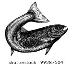 abstract,art,artwork,black,body,catch,chinook,chum,coho,curved,design,drawing,eating,fin,fish