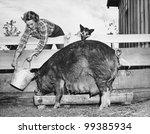 woman feeding pig | Shutterstock . vector #99385934
