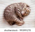 Stock photo newborn sleeping british baby kitten 99399170