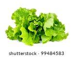 lettuce leaves isolated on... | Shutterstock . vector #99484583