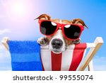Stock photo dog sunbathing on a deck chair 99555074