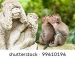 Stock photo long tailed macaques macaca fascicularis in sacred monkey forest ubud indonesia 99610196
