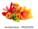 Tropical Flower Arrangement On...