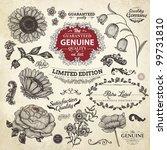 vector set  calligraphic design ... | Shutterstock .eps vector #99731810