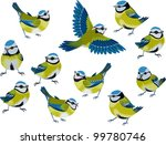 Flock Of Blue Tits Isolated...