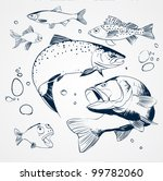 Vector Set  Fish