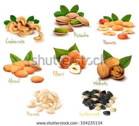 big collection of ripe nuts and