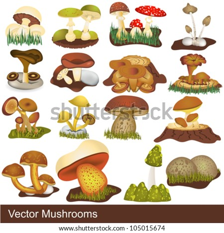 vector mushrooms  some are