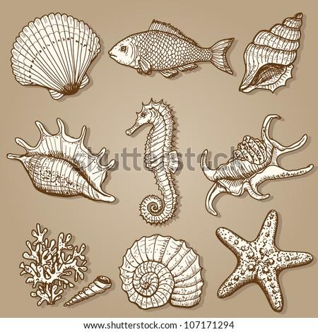 sea collection original hand