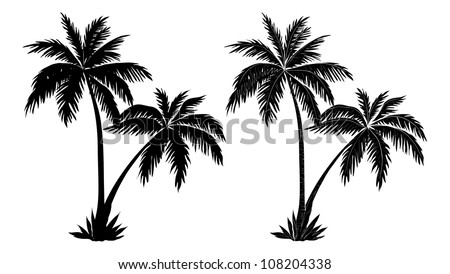 stock-vector-tropical-palm-trees-black-silhouettes-and-outline-contours-on-white-background-vector