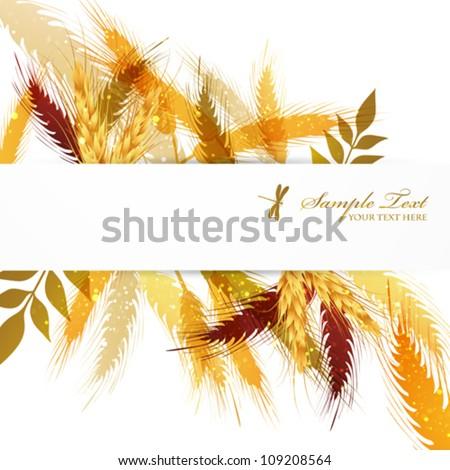 crop background