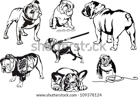 bulldogs set of black and