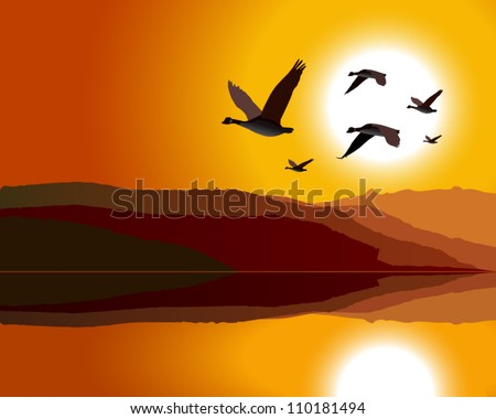 geese flying through mountain