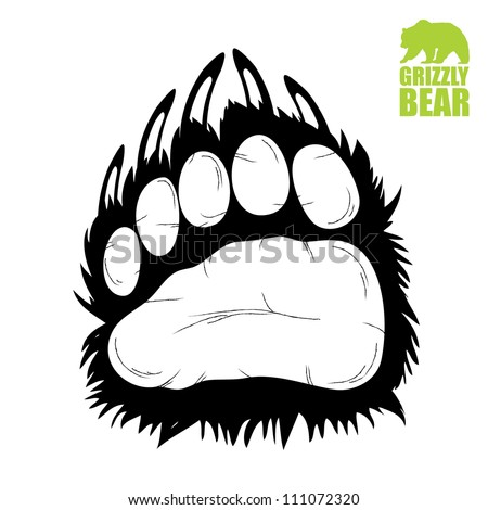 bear paw   vector illustration