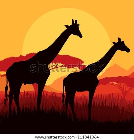 giraffe family silhouettes in