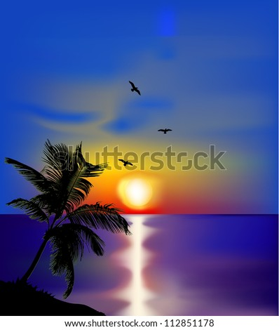 sunset on sea with palms and