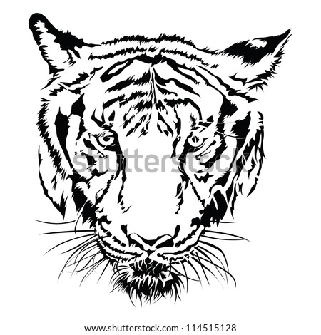tiger face black   white