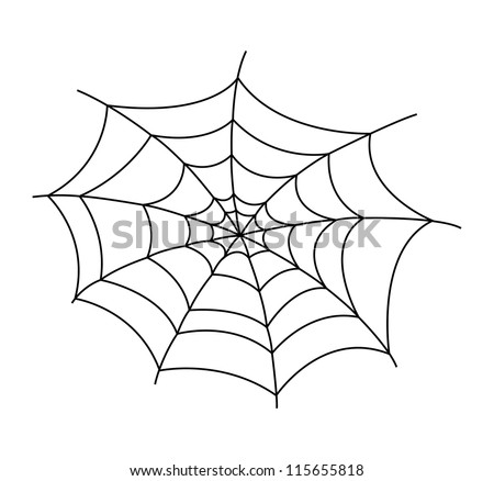 spider web vector illustration