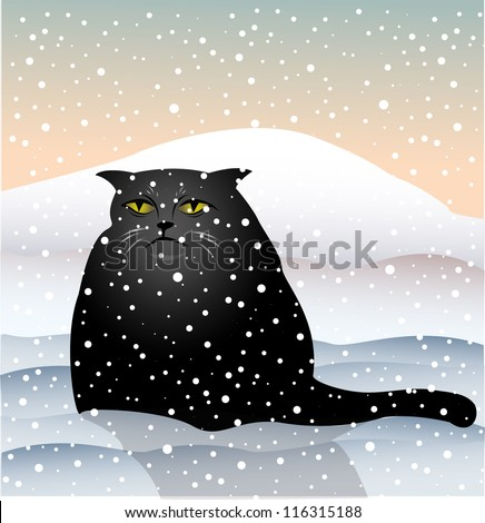 sad cat sitting in the snow