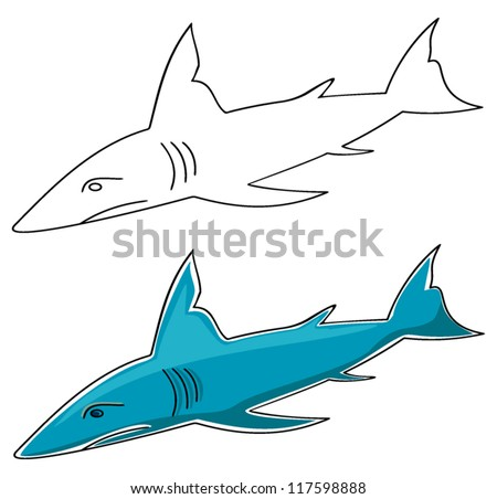 on this illustration the shark