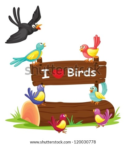illustration of birds and a