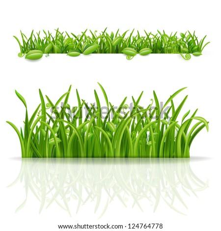 Cartoon Jungle Grass Advertising