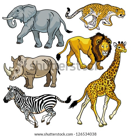 set with africa animals beasts