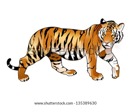 red tiger cartoon and vector