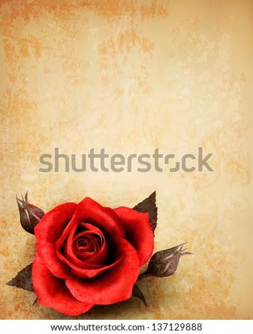 rose on a vintage paper