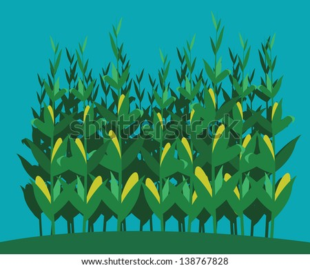Corn field free vector download (512 Free vector) for commercial ...