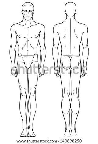 human body front and back outline female free vector download