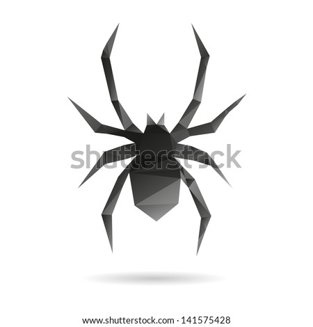 spider isolated on a white