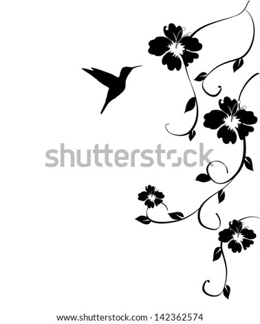 vector hummingbird and flowers