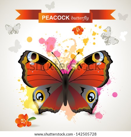 peacock butterfly over bright