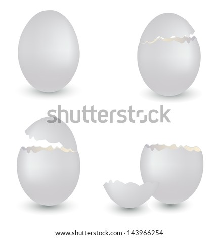 vector set of egg's shells