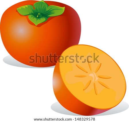 persimmon   vector illustration