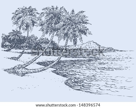 vector seascape palm trees