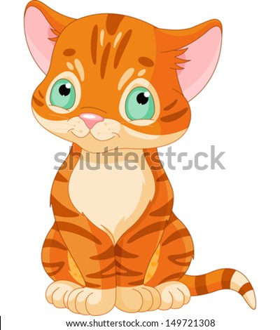 sitting red tabby kitten