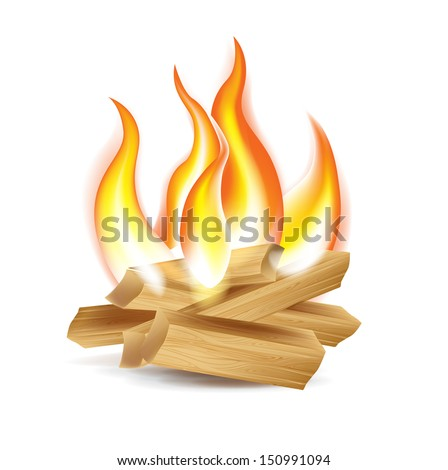 wood camp fire isolated on white