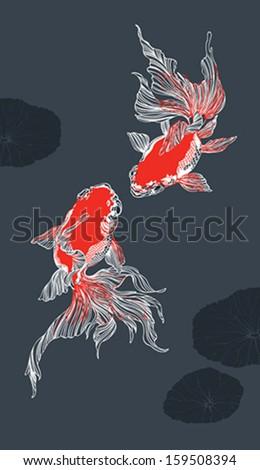 two golden fish on dark