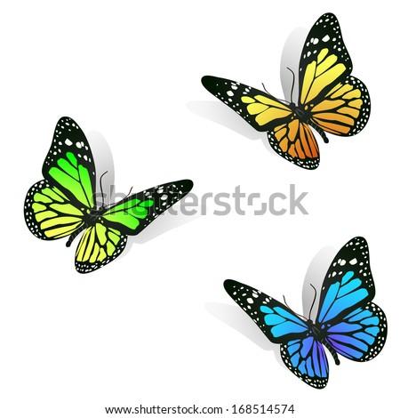 three colorful batterflies