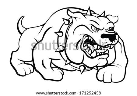 bull dog vector illustration