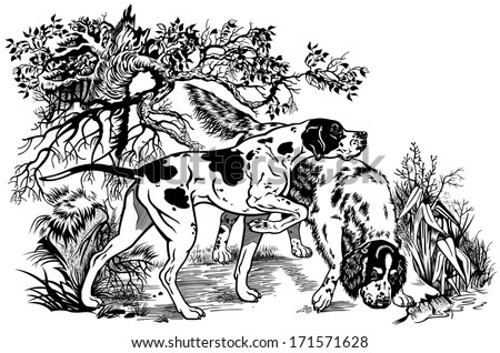 hunting dogs in forest  english