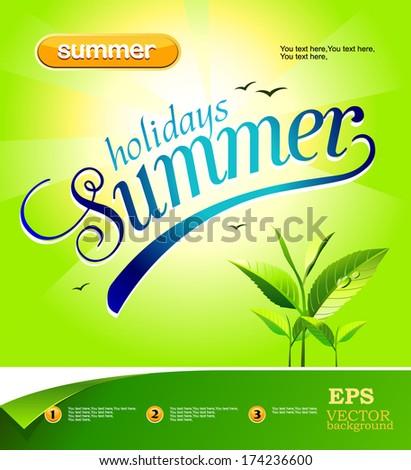 vector summer background