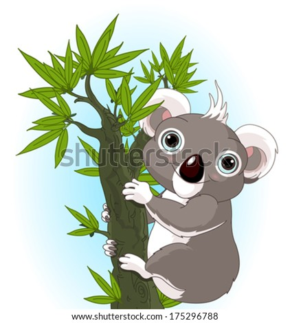 illustration of cute koala on a