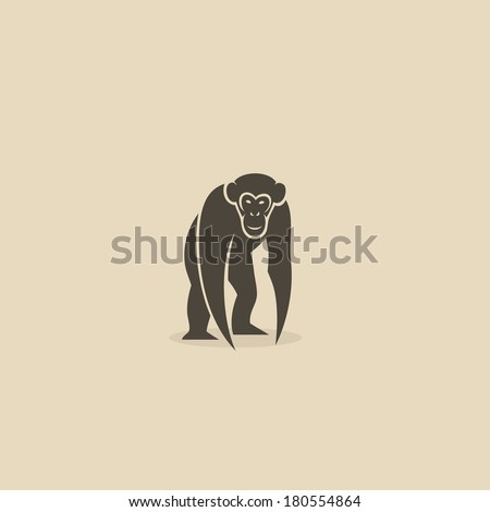 chimpanzee   vector illustration