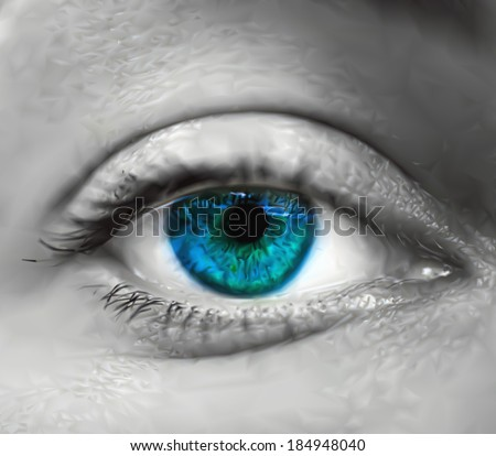 blue female eye macro vector