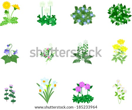 twelve icons of spring flower