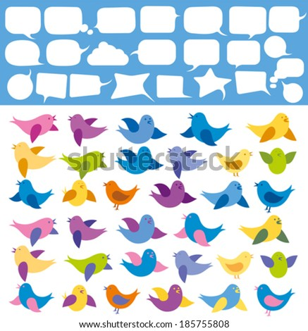 vector card with birds and